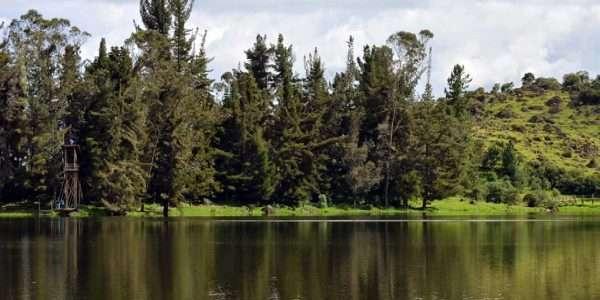 LagunaBusa2